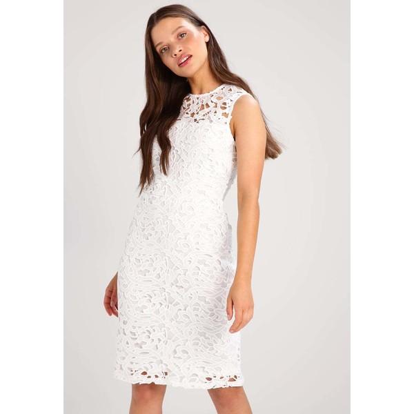 Dorothy Perkins Petite Sukienka etui ivory DP721C042
